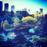Central_Park_NYC2