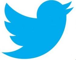twitter, cassyette, prettylittlething, plt, blog, link