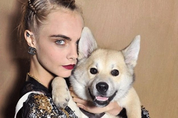 cara-delevignes-dog-had-a-more-glamorous-day-than-2-30533-1453841772-18_dblbig