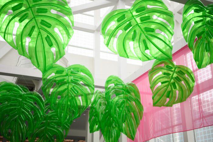 cute palm trees bwutycon la